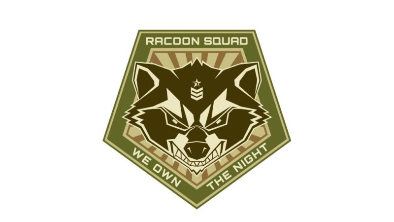 RSAA – Racoon Squad Airsoft Austria (Niederösterreich)